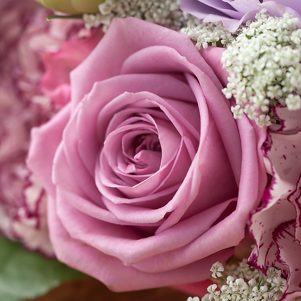紫色の花言葉
