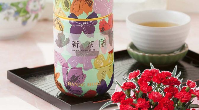 母の日 鉢植えセット「丸山製茶 掛川産深蒸し新茶~HANAE MORI缶~」